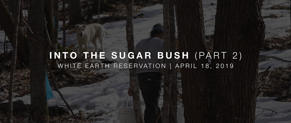 seekjoy-web-blogPosts-videoStill-IntoTheSugarBush_Part2.jpg