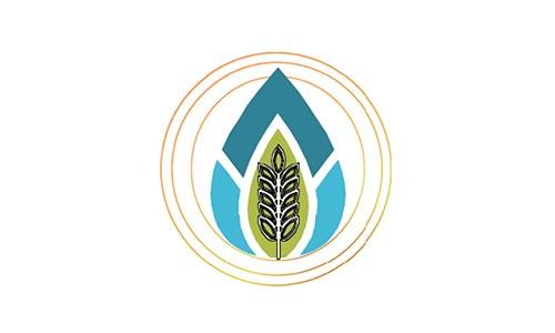 R.I.S.E. Coalition Logo Graphic
